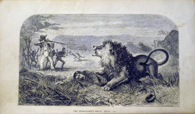 Livingstone is mauled by a lion