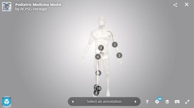 Interactive 3D model